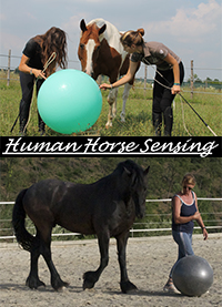 Human Horse Sensing