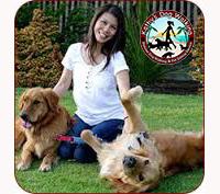 Kathy's Dog Walking Service