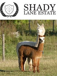 Shady Lane Estate