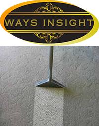 Ways Insight
